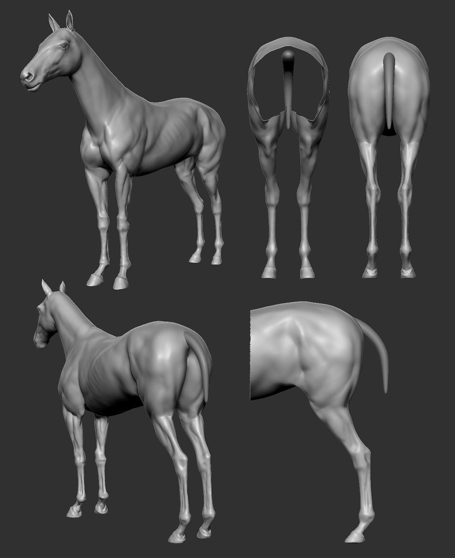 gabrielchiang_wk04_horsesecondary